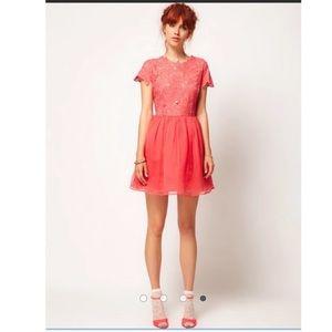 ASOS Salon Skater Appliqué Flower Top Dress